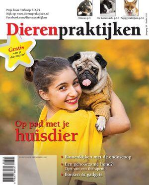 Cover- Herfst 2020