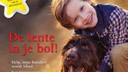 Cover DP Lente 2021_