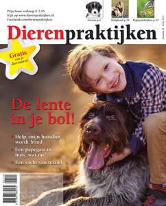 Cover_DP_Lente 2021